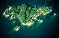 above-black-duck-island